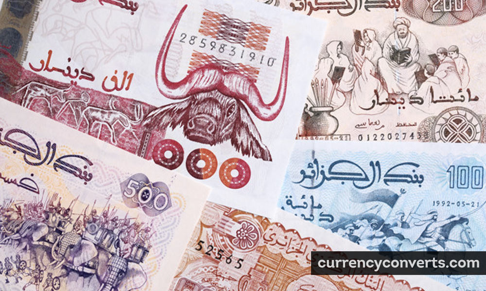 Algerian Dinar DZD currency banknote image