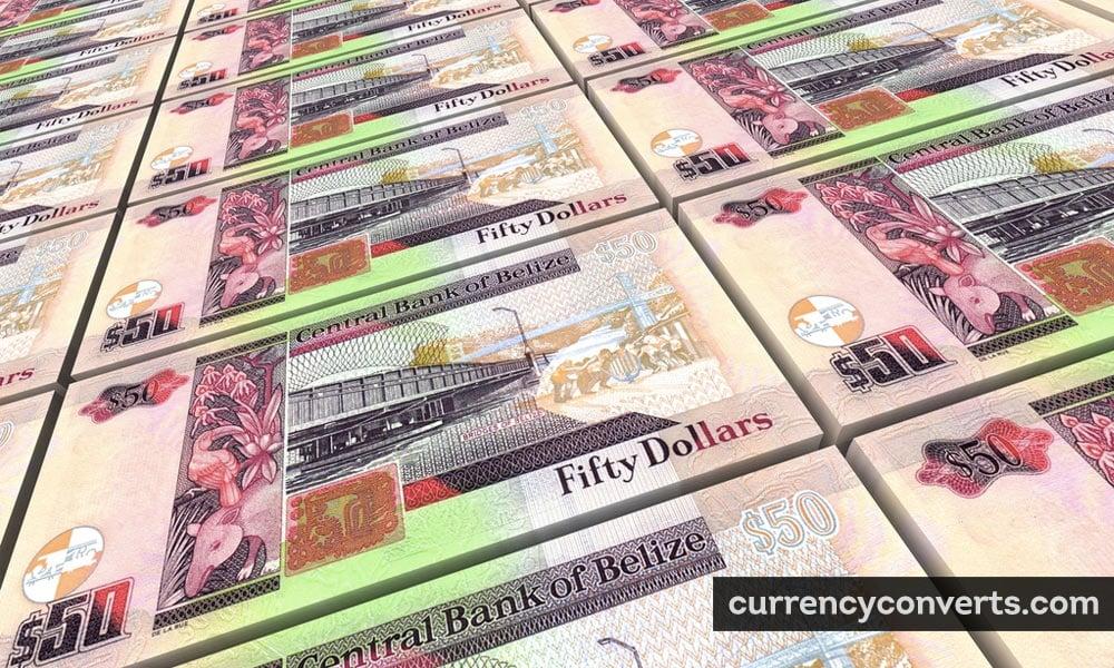 Belize dollar - BZD money image