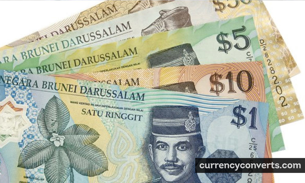 Brunei Dollar BND currency banknote image