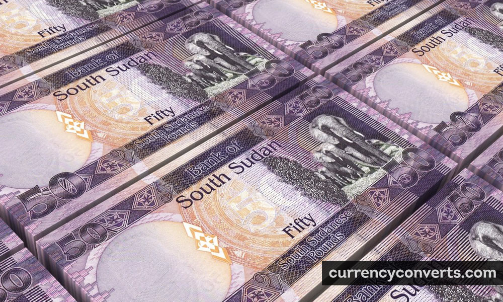 Sudanese pound - SDG money image